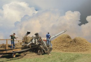 Threshing jpg